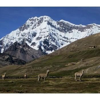 Rainbow Mountain Day Tour Budget Cusco Peru