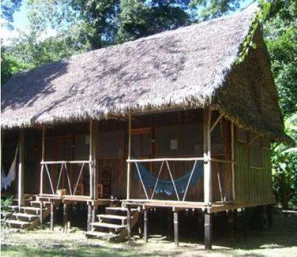 5-Day Jungle Tour (Capibara Program) - Chalalan Ecolodge