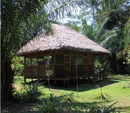 2-Day Jungle Tour (Mashaquipe Ecolodge)