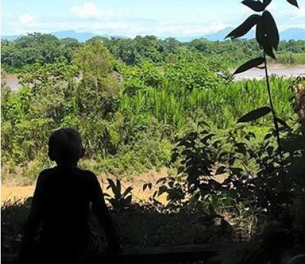 Full day Cullpana Program - Madidi Jungle Ecolodge