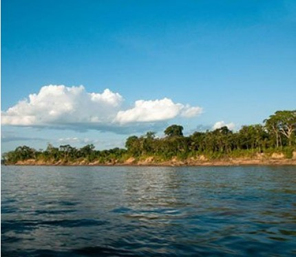 Amazon Planet Jungle Tour 4 Days (from Puerto Maldonado)