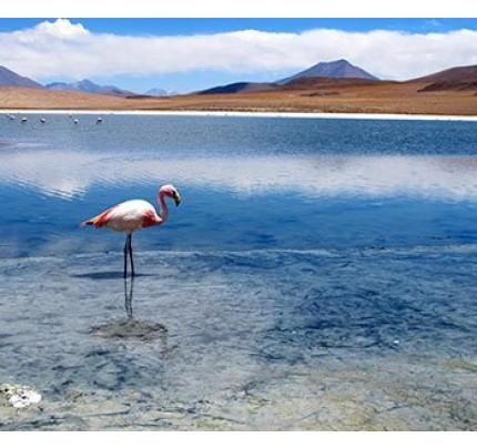 Perla de Bolivia Salt Flats Tour Uyuni - 3 Days + Transfer to Chile