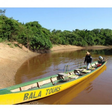 2-Day Jungle Tour (Bala Tours Ecolodge)
